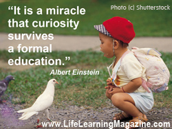 It is a miracle...Albert Einstein