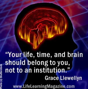 quote by Grace Llewellyn